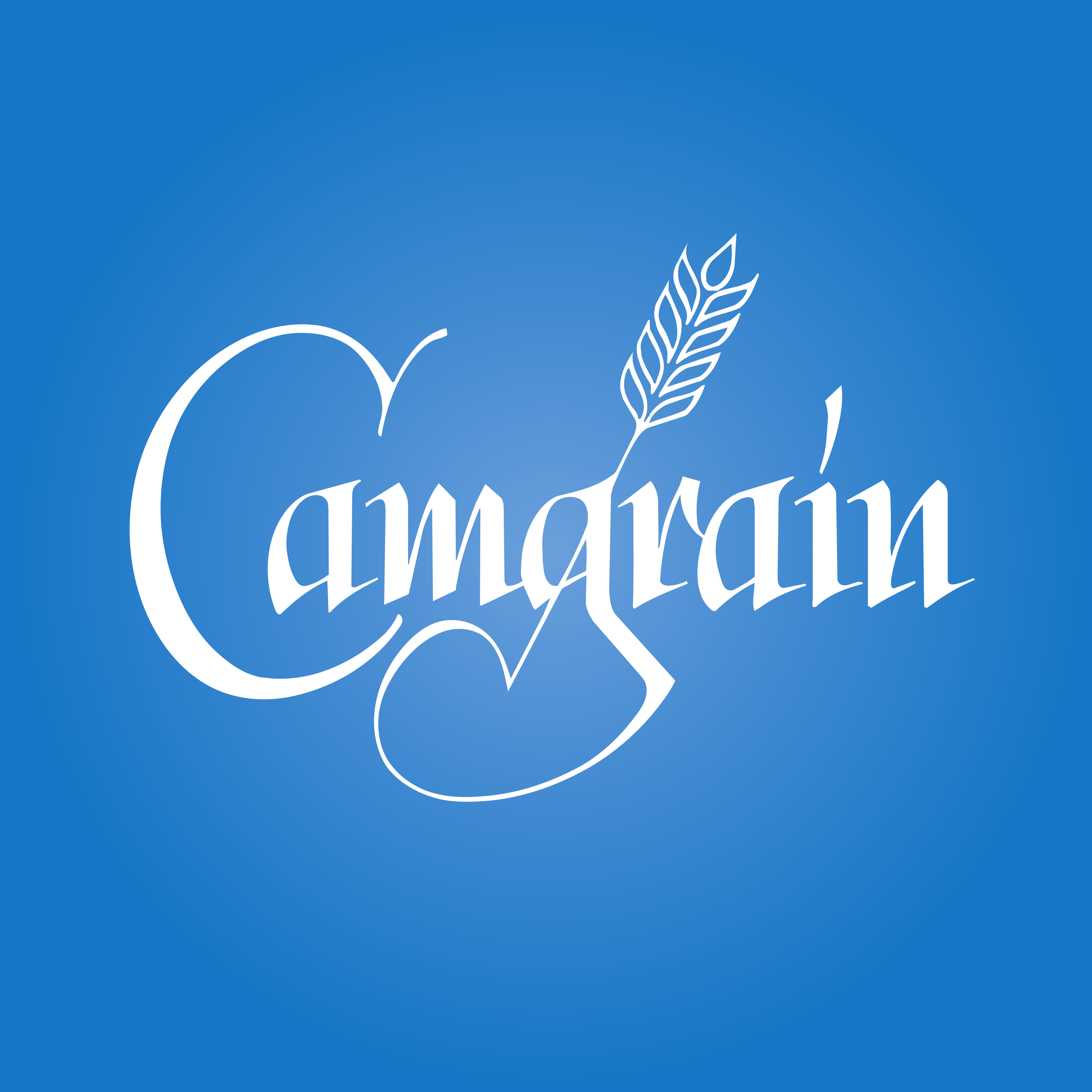 camgrain-blue